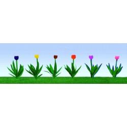 tulipány, výška cca 2 cm, čtyři barvy květů, celkem 48 ks