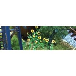 slunečnice, výška 4 cm, 16 ks