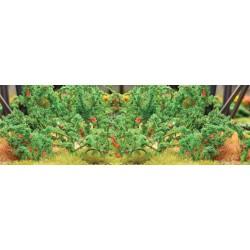 rajčata, výška cca 2 cm, 18 ks