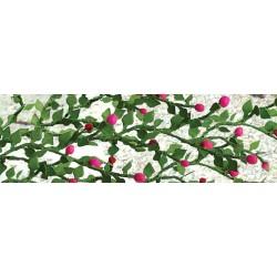 růže pnoucí, 6 rostlin 5 - 6 cm dlouhých