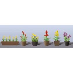 hrnkové květiny vzor 2, výška cca 2 cm, 3 druhy květináčů, různé barvy květů, celkem 6 ks