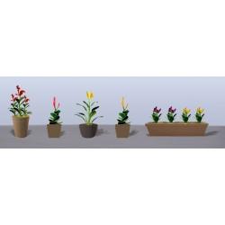 hrnkové květiny vzor 4, výška cca 2 cm, 3 druhy květináčů, různé barvy květů, celkem 6 ks