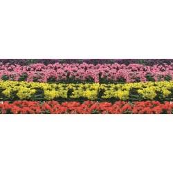 kvetoucí živý plot, výška 1.5 cm, délka 12cm, čtyři barvy květů, celkem 8 kusů