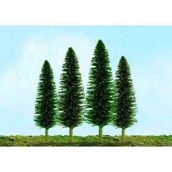 cedr úsporný, výška 2.5 - 5 cm, 55 ks