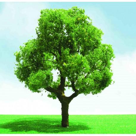 listnatý strom výběrový, výška 4 - 5 cm, 3 ks