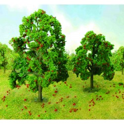 Jabloň, výška 11 - 13 cm, 2 ks
