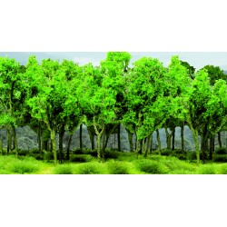 Mladý les - listnaté stromy zelené, 5-6 cm, 15 ks