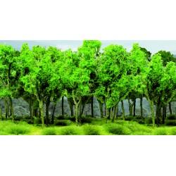 Mladý les - listnaté stromy zelené, 7-9 cm, 9 ks