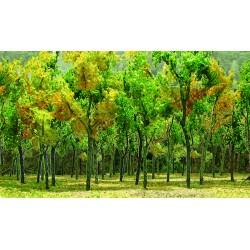 Mladý les - listnaté stromy podzimní, žlutozelené, 7-9 cm, 9 ks