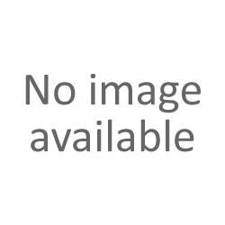 javor výběrový, výška 4 - 5 cm, 3 ks